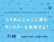 【7/30(月)】元水族館飼育員と探る海のちいさな生き物たち・・ちりめんじゃこに潜むモンスターを発見せよ!