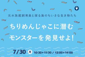 【7/20(月)】元水族館飼育員と探る海のちいさな生き物たち・・ちりめんじゃこに潜むモンスターを発見せよ!